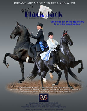 Visser_Black_Jack_Jan_2021.jpg