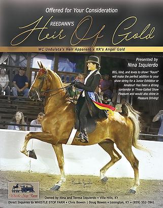 Heir_Of_Gold