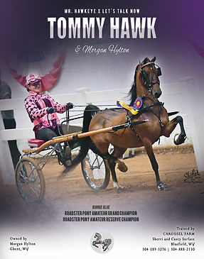 TOMMY HAWK