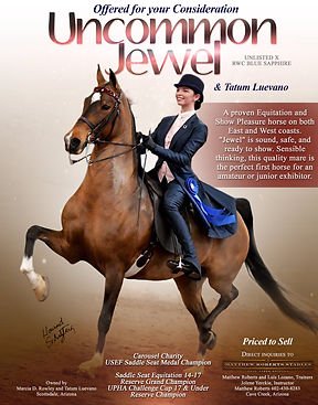 ROBERTS_LUEVANO_UNCOMMON-JEWEL_NOVEMBER_