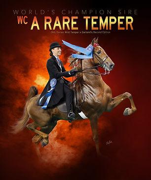 WILLOWBANK_A-RARE-TEMPER_Arabian-Times-m