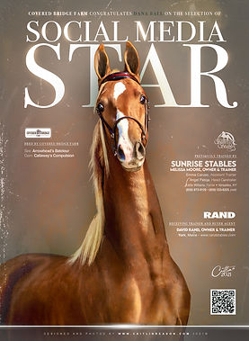 Blast_Sunrise-Stables_Social-Media-Star.
