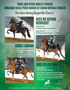 Sarah Russell Stables offers for sale Kiss Me Before Midnight, Loose Cannon, Our Dream Doll