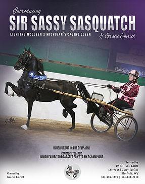 Carousel_Sir Sassy Sasquatch_Blast_June_
