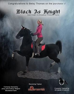 Desmar_Black as Knight_Jan_2021 (1).jpg