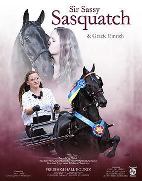 Carousel_Sir-Sassy-Sasquatch_Pre-louisvi