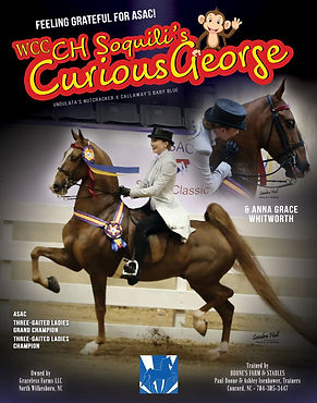 WCC CH Soquili's Curious George