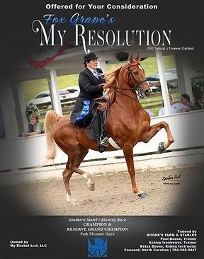 Boone_Spiegel_My Resolution_June_2021 co