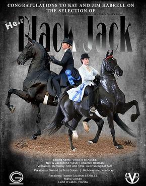 Visser_Dolan_Black_Jack_Feb_2021.jpg