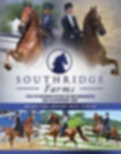 Bouvet_Southridge_For Sale_Blast_July_20