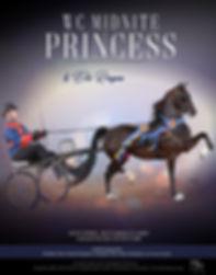 Hollow-Haven_Gise_Midnite-Princess_Blast