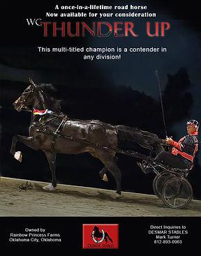 Desmar_Thunder Up_Jan_2021 (1).jpg