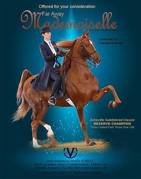 VISSER_MCDONALD_FAR AWAY MADEMOISELLE_MA