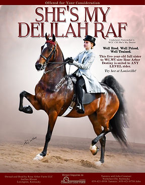 Carriage_Lane_Delilah_AUG_2020.jpg