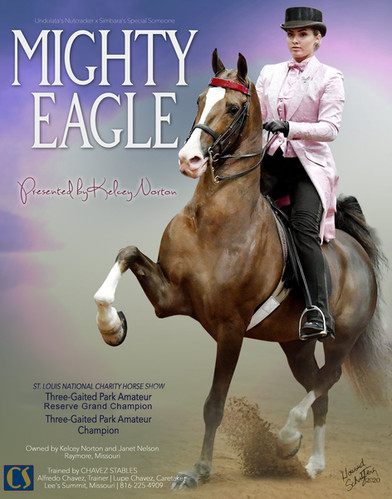 CHAVEZ_STABLES_NELSON_MIGHTY-EAGLE_Oct-2