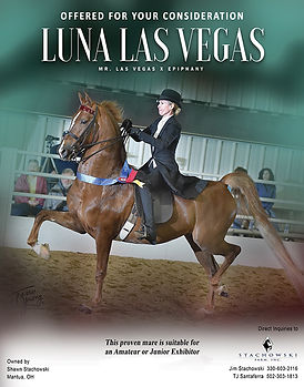 Stachowski_Luna Las Vegas_MMBlast_July_2