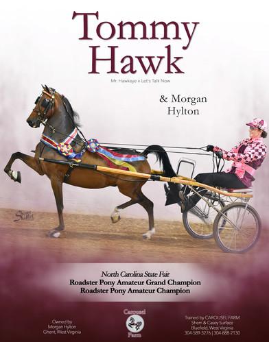 Carousel_Hylton_TOMMY-HAWK_Oct_2020.jpg