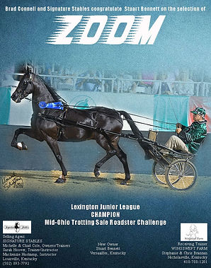 SIGNATURE STABLES_CONNELL_ZOOM_AUGUST_2021 copy.jpg