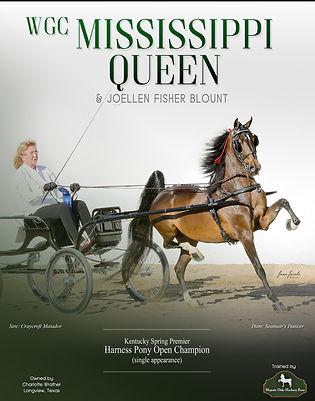Majestic_Oaks_Blount_Mississippi_Queen_B