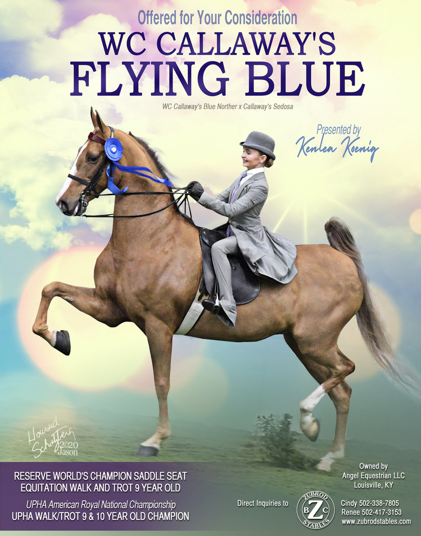 ZUBROD_ANGEL-EQUESTRIAN_CALLAWAYS-FLYING