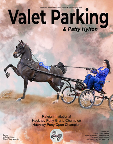 CAROUSEL FARM_HYLTON_Valet Parking_APRIL