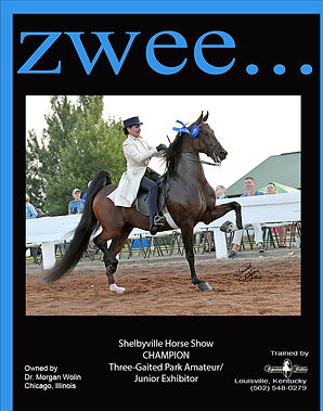 SIGNATURE STABLES_WOLIN_ZWEE_AUGUST_2021 copy (3).jpg