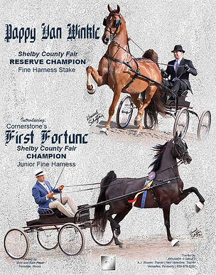 Bruwer_Reed_Pappy_Fortune_June_2021 copy.jpg