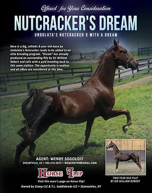 Nutcracker's Dream_ASB Broodmare For Sale