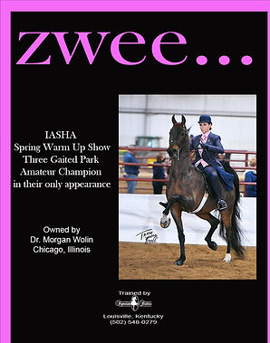 SIGNATURE STABLES_WOLIN_ZWEE_MARCH_2021