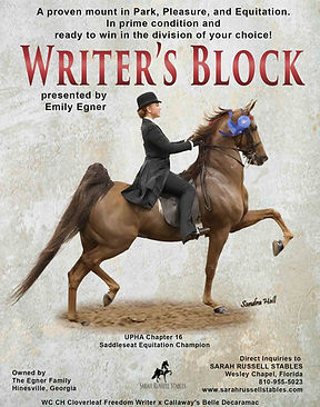 SARAH RUSSELL STABLES_EGNER_WRITER'S BLO