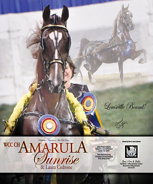 MM_Amarula Sunrise_08.16.20_R.jpg