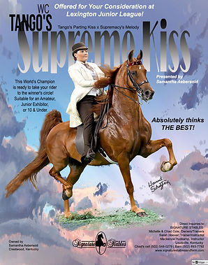 SIGNATURE-STABLES_AEBERSOLD_TANGO'S-SUPREME-KISS_July_2021.jpg