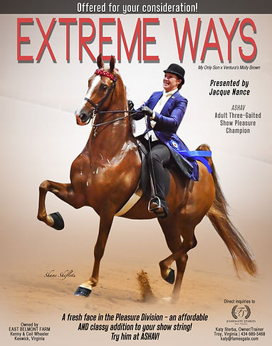 FAMESGATE-STABLES_WHEELER_EXTREME-WAYS_S