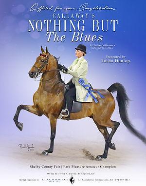 TJ_Callaway's-Nothing-But-The-Blues_Blas