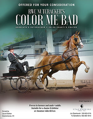Stachowski_Nutcracker's Color Me Bad_MMB