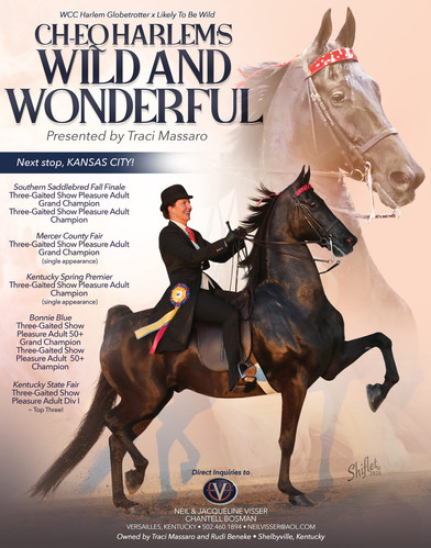 Visser_Beneke_Wild_and_Wonderful_OCT_202