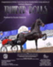 Cascade Stables congratulates Perfect Touch Stables on Thunder Rolls