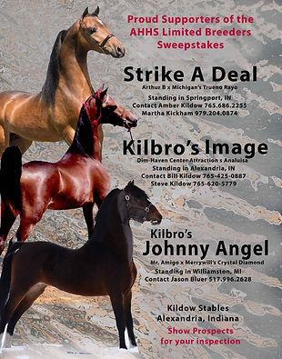 Kildow_LBS_3-Ponies_March_2021.jpg