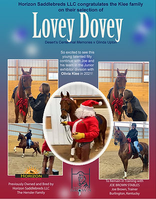 Hensler_Joe Brown_Lovey Dovey_Dec_2020.j