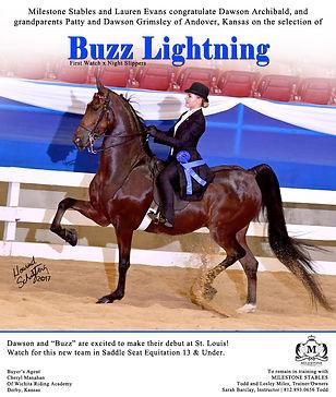 Milestone_Buzz-Lightning_Blast_sept-2017