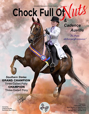 CAROUSEL FARM_Auville_CHOCK FULL OF NUTS