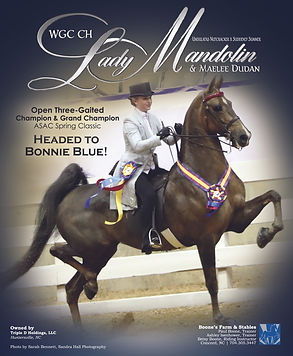 WGC CH LADY MANDOLIN
