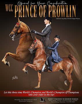 Des_Mar_Prince_Of_Prowlin_Sept_2020.jpg