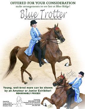 Blue Trotter - Wingswept-2.jpg