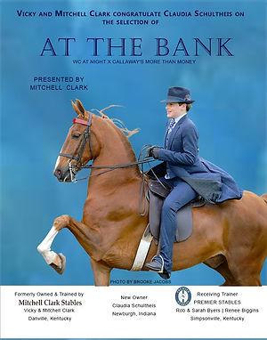 Clark_At The Bank_Jan_2021 (1).jpg