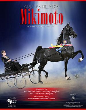 ARROWHEAD_MOORE_ARROWHEADS_MIKIMOTO_OCTO
