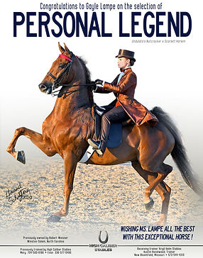 HIGH-CALIBER-STABLES_WEISNER_PERSONAL-LE