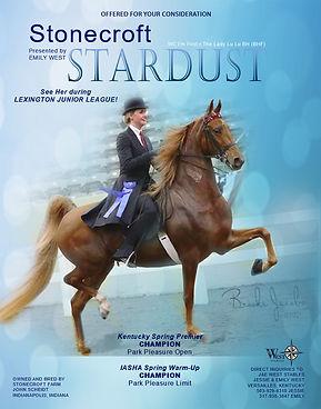 West_Scheidt_Stonecroft-Stardust_July_2021.jpg