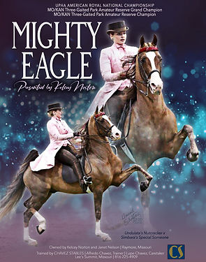 Chavez-Stables_Mighty-Eagle_Dec-2020.jpg