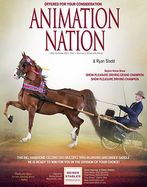 Reiser_Animation_Nation_MM_Aug_2020.jpg